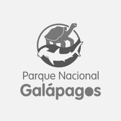 pnggg